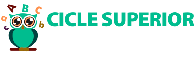 Cicle Superior